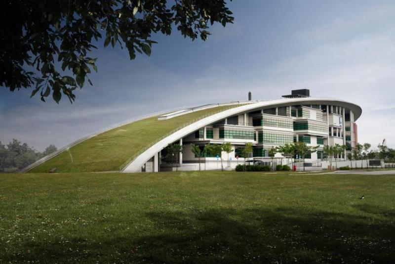 Ivy Bound International School